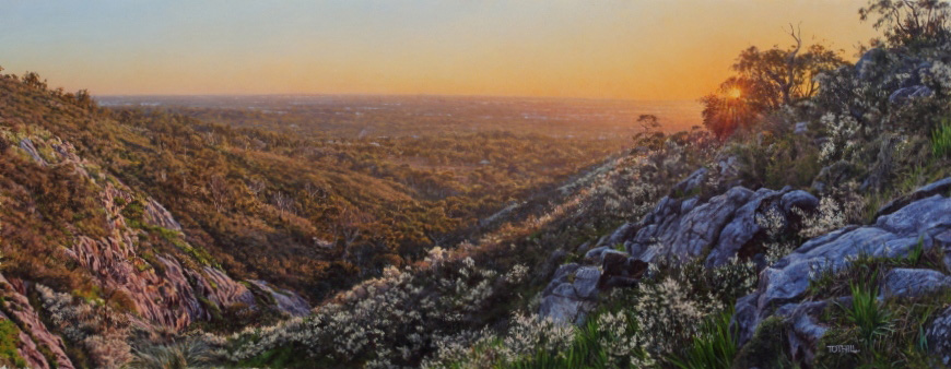 Last Light Over the Escarpment - Darling Range WA | Oil on linen, 850mm x 370mm